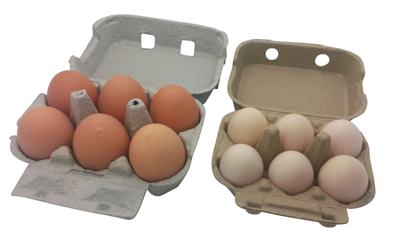 Bantam Egg Box Next to Standard Egg Box